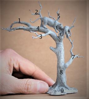 partes del árbol (2)2